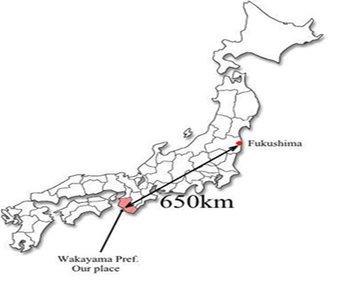 Der er 650 kilometer fra a-kraftværket Fukushima til Wakayamadistriktet.